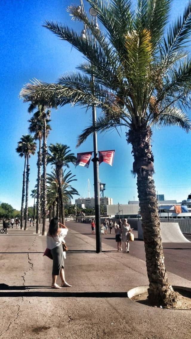 labarceloneta-palmtrees-zorica-walinkg-around