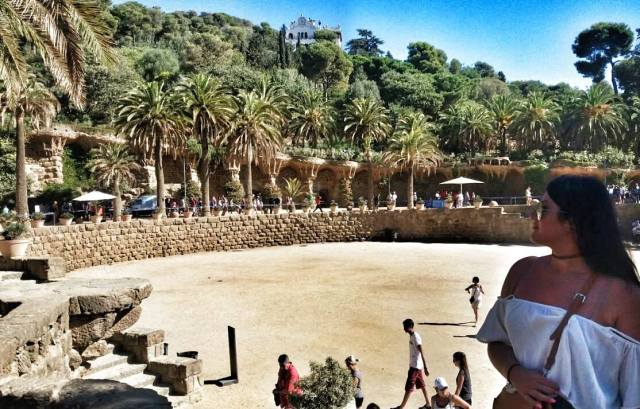 palmtrees-in-parc-guell