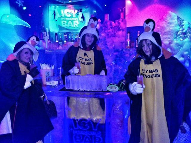 three_friends_in_icebar_penquins_busapest