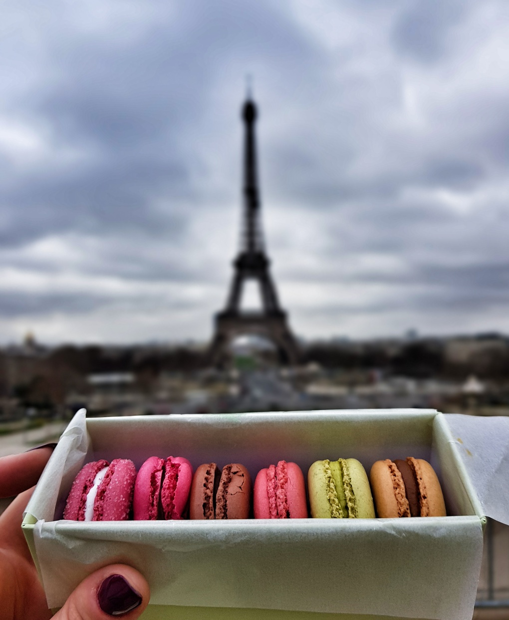 macarons_paris_eiffel_tower
