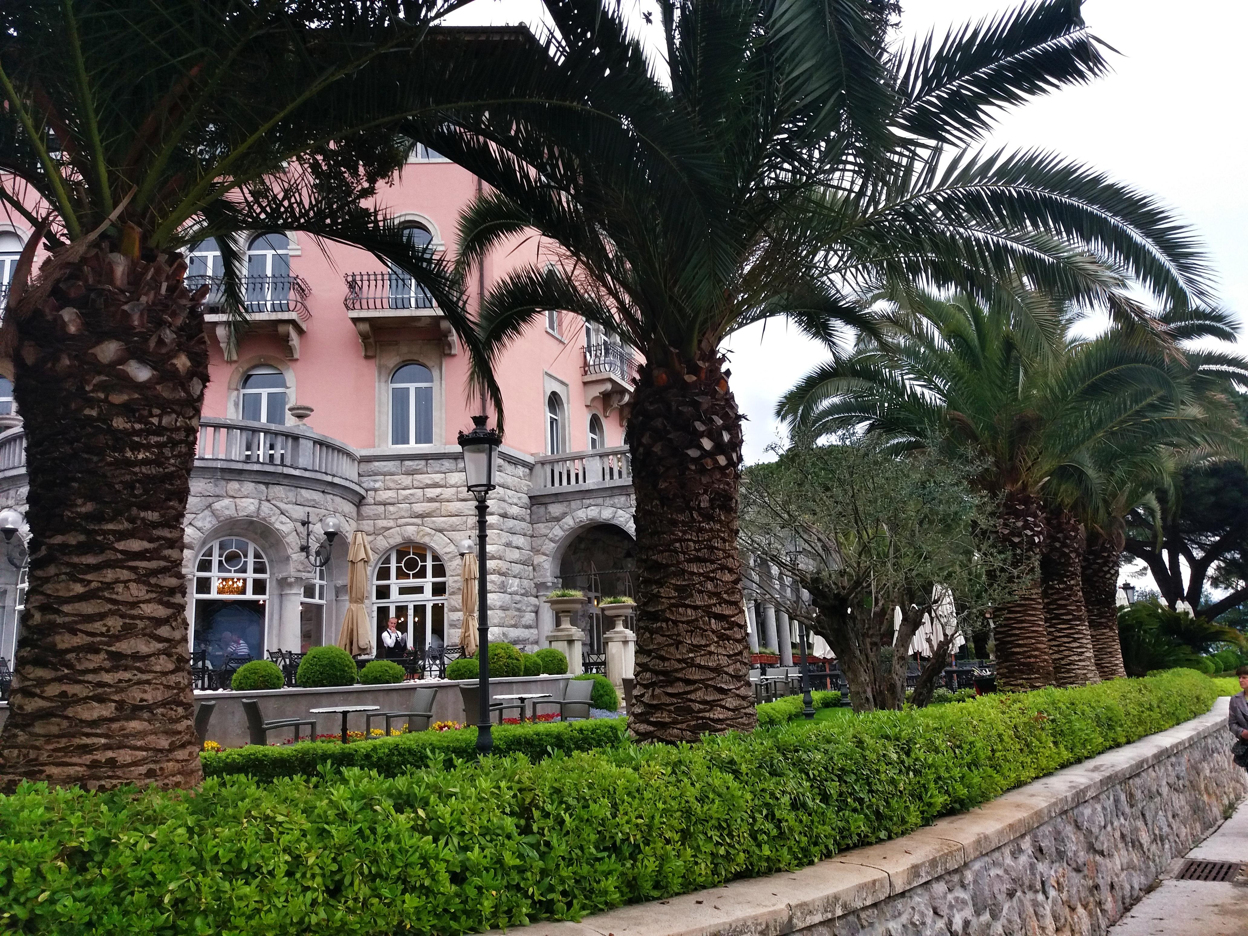 palmtrees_opatija